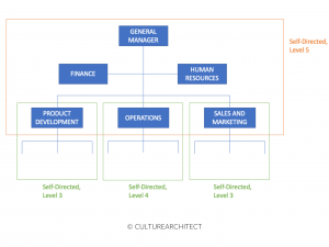 culturearchitect-self-directed-teams